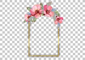 鲜花婚礼请柬水彩,花卉,插花,切花,花瓣,开花,粉红色,粉红色的花,