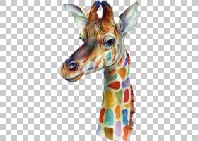 长颈鹿卡通,颈部,野生动物,长颈鹿,iPhone,移动电话,水彩画,画布,