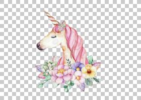 水彩花卉背景,花瓣,花,墙贴花,画布,颜色,花卉设计,数字艺术,版画
