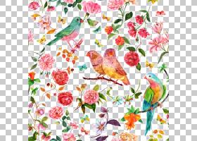 创意抽象背景,花卉,植物群,创意艺术,插花,植物,鸟,分支,纺织品,