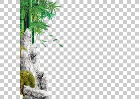 中秋节海报竹叶免费PNG剪贴画水彩叶子,免费徽标设计模板,叶,摄影