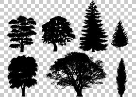 树无头骑士PNG剪贴画水彩画,虚构人物,叶,分支机构,绘画,剪影,云