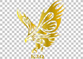 全球鹰收购公司全球鹰娱乐公司董事会鹰PNG剪贴画公司,动物,徽标,