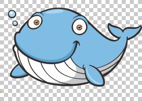 鲸鱼卡通,卡通,线路,鱼,面积,海洋,须鲸,蓝鲸,鲸鱼,