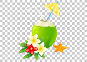 夏花背景,花,鸡尾酒装饰,喝酒,椰子,博客,夏天,鸡尾酒,夏日海滩,