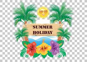 夏季热带花卉,花卉设计,切花,草,棕榈树,树,槟榔,花,植物,党,海景