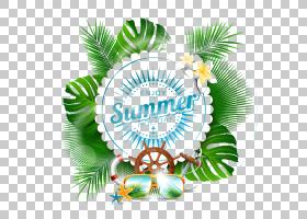 夏季字体,线路,字体,圆,树,文本,假日,夏天,夏日海滩,暑假,夏季背