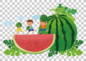 夏季海报背景,减肥食品,蔬菜,植物,本地食物,水果,天然食品,食物,