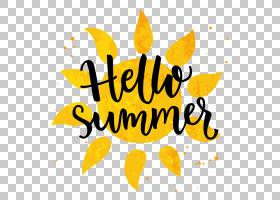 夏季海报背景,向日葵,花瓣,食物,面积,线路,幸福,水果,叶,花,黄色