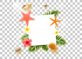 夏季海报背景,圣诞装饰,圣诞装饰品,夏天,海报,如果,休假,眼底,海