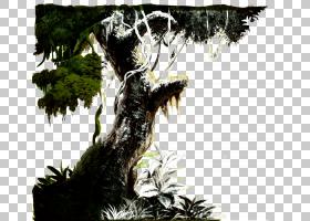 夏季海报背景,木本植物,树,室内植物,植物,盆景,像素,夏天,免费,