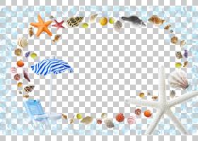 夏季海报背景,材质,线路,软件,海报,夏天,模板,
