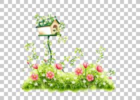 绿花边框设计,花卉,草,绿色,花盆,植物群,花卉设计,插花,植物,花