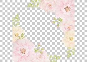 背景图案框架,花卉,插花,模式,设计,玫瑰家族,纺织品,花卉设计,花