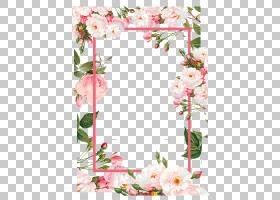 背景图案框架,花卉,花束,模式,插花,设计,人造花,玫瑰家族,玫瑰秩