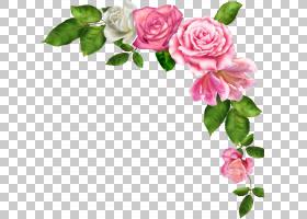 背景花框架,花卉,开花,植物茎,花束,蔷薇,切花,分支,插花,花瓣,玫