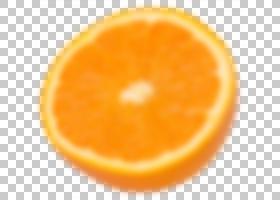 沙滩球柑桔橙色PNG剪贴画蓝色,沙滩,白色,食品,橘子,柑橘,标志,色