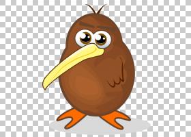 猛禽猫头鹰喙GitHub Inc.食品,鸡形目,鸡,猫头鹰,鸟,水果坚果,猛