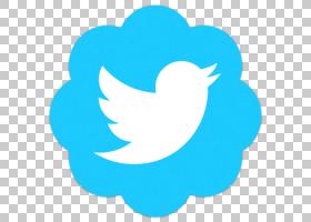 社交媒体用户信息Google帐户公司,社交媒体,Twitter徽标PNG剪贴画