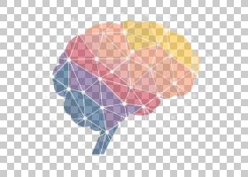 神经科学前沿脑科学杂志Frontiers Media研究PNG剪贴画人,生物学,