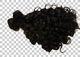 摄影数码艺术头发卷发PNG剪贴画杂项,摄影,其他,人类,越界艺术,免