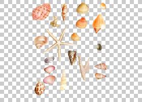 冰淇淋锥形背景,食物,桃子,冰淇淋蛋卷,菜肴,寄居蟹,创造性工作,