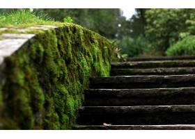 楼梯,壁纸,(13)