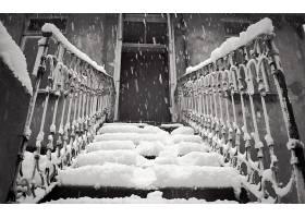 楼梯,雪,雪花,黑色,白色,门,壁纸,