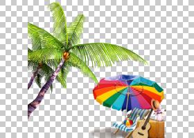 夏棕榈树,热带,椰子,植物,槟榔,棕榈树,树,雨伞,叶,卡通,夏天,海