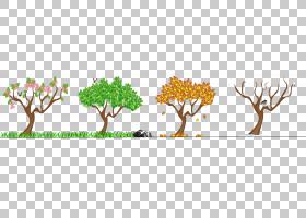 夏花背景,商品,花,植物茎,草族,分支,植物群,草,植物,树,春夏秋冬