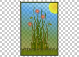 夏花背景,景观,树,植物茎,商品,生态区,蒲公英,天空,草原,场,草族