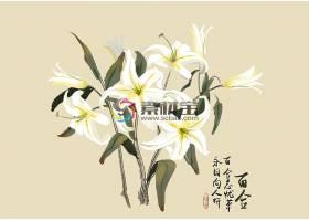 创意中国风水墨花卉插画