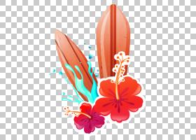 夏花背景,橙色,花瓣,花,植物,徽标,艺术品,夏天,卡通,滑板,