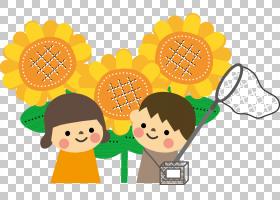 夏花背景,水果,向日葵,材质,花,幸福,微笑,食物,黄色,老年,祖母,图片