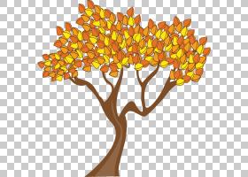 夏花背景,细枝,橙色,分支,植物茎,黄色,叶,花,夏天,冬天,拉斯维特