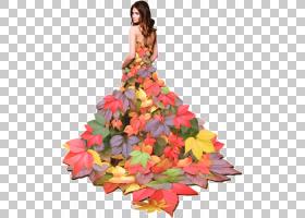 夏花背景,花卉设计,插花,桃子,花,花瓣,橙色,时尚,文本,歌,夏天,