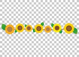 夏花背景,葵花籽,徽标,商品,草,草族,向日葵,文本,黄色,法国绣球,