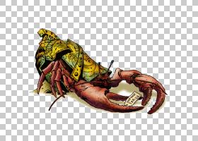 海鲜背景,食物,爪子,海鲜,十足,昆虫,幻想,食人魔,D20系统,角色扮
