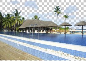 卡通棕榈树,财产,房地产,共管公寓,水,休闲,休假,游泳池,棕榈树,