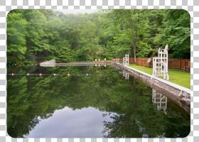卡通自然背景,湖相平原,州立公园,水道,银行,河流,树,河口,湖,运