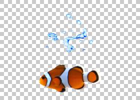 鱼卡通,线路,橙色,鱼,海报,黑白,橙色小丑鱼,样机,小丑鱼,T恤,