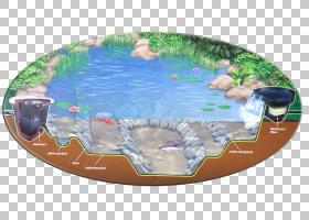 卡通自然背景,水资源,水,塑料,休闲,娱乐,游泳池,水景公司,锦鲤池