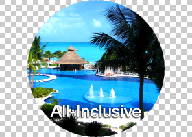 棕榈树背景,天空,水,棕榈树,热带,游泳池,休闲,互联网,蜜月,游泳