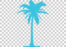 棕榈树背景,线路,植物茎,分支,绿色,棕榈树,木本植物,树,槟榔,天