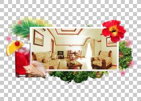棕榈树背景,花卉设计,花卉,花,回家,奥隆阿波,海湾,游泳池,度假村