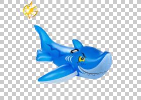 海豚卡通,鞋,动物形象,海豚,软骨鱼,鲨鱼,鱼,安全,企业社会合规性