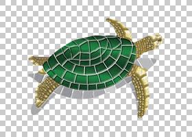 海龟背景,爬行动物,地板,绿海龟,池龟,黑头海龟,乌龟,游泳,陶瓷,
