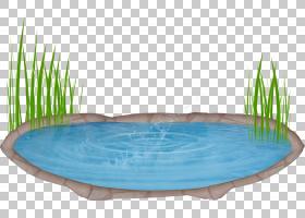 池塘卡通,植物,游泳池,草,水资源,水,绘图,水体,池塘,湖,