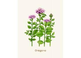 手绘清新绿色植物植株品种展示海报设计