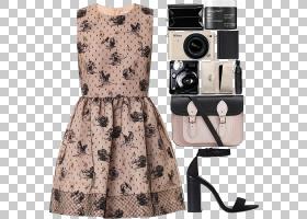 颜色背景,花边,火柴时尚,白色,服装,颜色,时尚,着装,Cygnini,